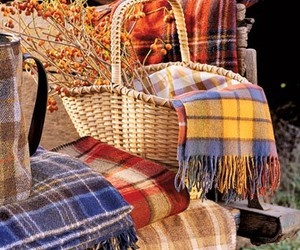 autumn, blankets, and basket image