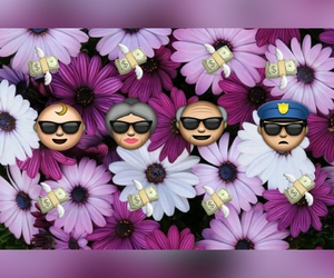 baby, cool, and flower image