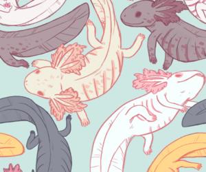 alternative, art, and axolotl image