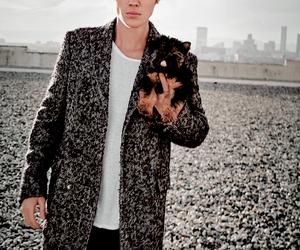 justin bieber, dog, and bieber image