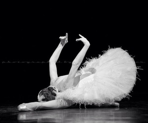 ballet and Swan image