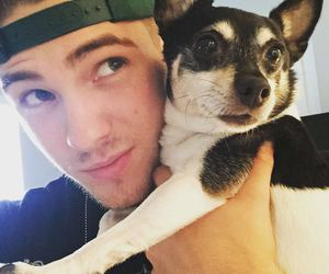 dog, cody christian, and cute image