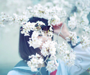 girl, flowers, and japan image