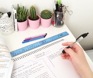 study, school, and cactus image