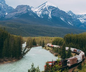 forest, train, and beautiful image