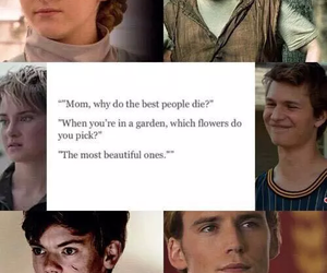 divergent, newt, and book image