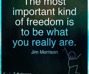 freedom, quote, and you image