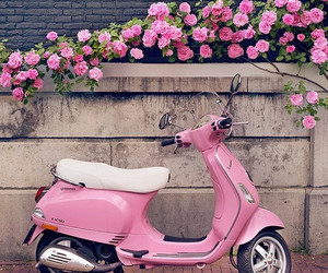 flower, scooter, and pink image