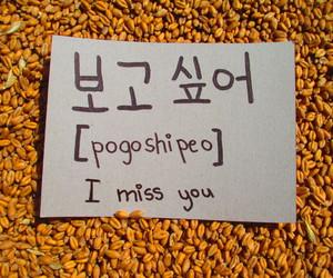 aesthetic, korea, and orange image