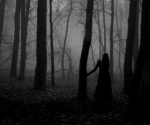 alone, woods, and girl image