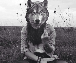 black and white, wolf, and fuck image