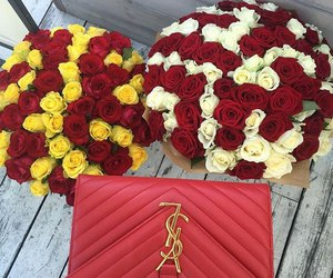 roses, flowers, and YSL image