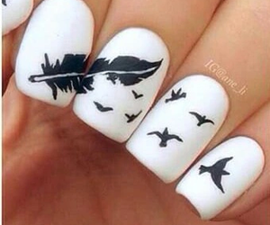 nails, bird, and white image