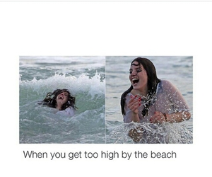 beach, funny, and water image