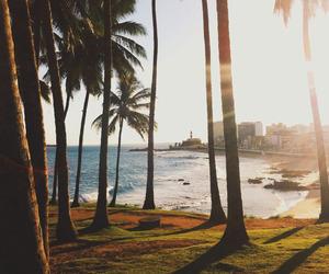 beach, palms, and sea image
