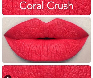 coral, crush, and glamour image