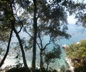 Greece, trees, and sea image