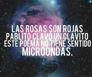 poema, rose, and Microwave image