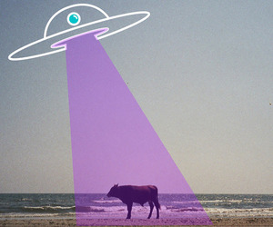 cow, aesthetic, and alien image