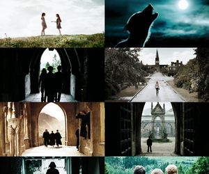 hermione, rony, and harry image