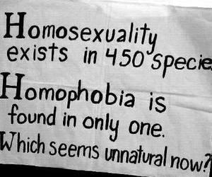 gay pride, natural, and unnatural ? image