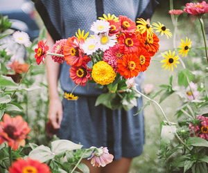flowers, vintage, and colors image