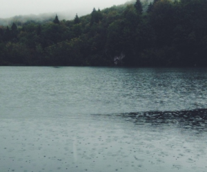 rain, nature, and lake image