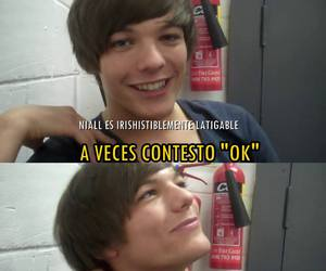 louis, meme, and one direction image