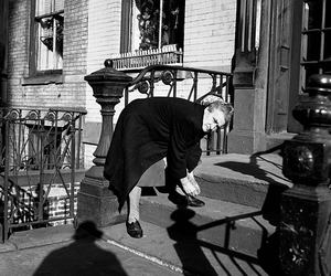 vivian maier and viven maier image