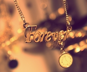 forever, necklace, and gold image