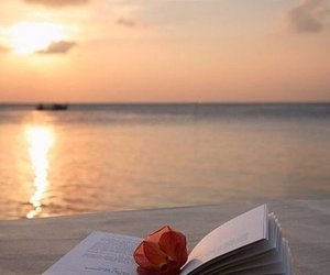 book, flowers, and summer image
