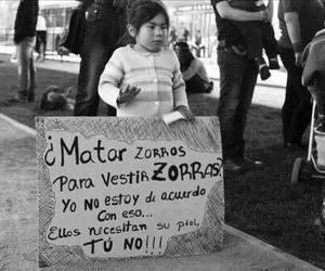 piel, verdad, and zorros image