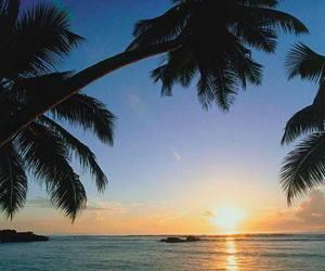 beach, seychelles, and Island image