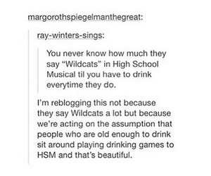 funny, high school musical, and wildcats image