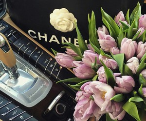 flowers, chanel, and car image