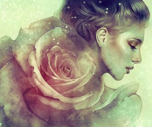 art, beauty, and rose image