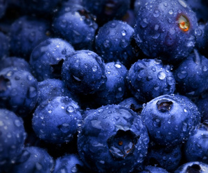 berries, blueberry, and wallpaper image
