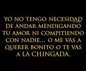 bonito, amor, and yo image
