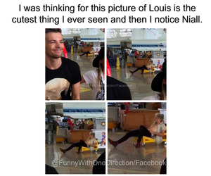funny, niall horan, and louis tomlinson image