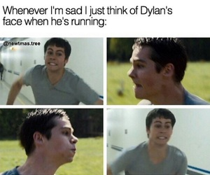funny, teen wolf, and maze runner image