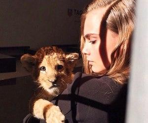 cara delevingne, model, and lion image