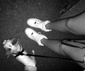b&w, dog, and shoes image