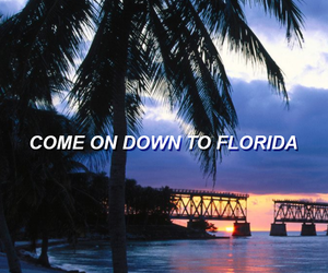 grunge, quote, and florida image