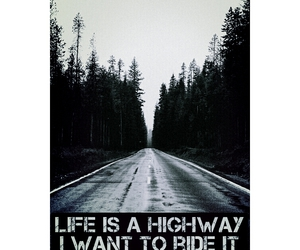 Darkness, forest, and highway image