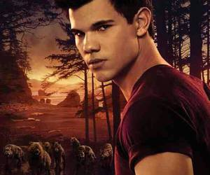 breaking dawn, Taylor Lautner, and twilight image
