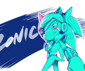 sonic and zonic image