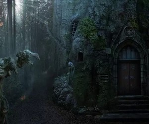 forest, dark, and door image