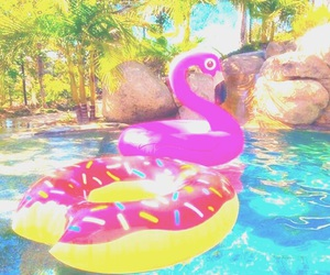 donuts, summer, and flamingo image