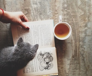 book, cat, and tea image