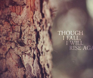 quote, fall, and rise image